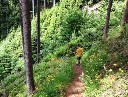 Trip Tip: zomervakantie in Eben im Pongau