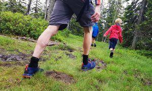 De beste wandelsokken uit onze wandelsokken test 2019