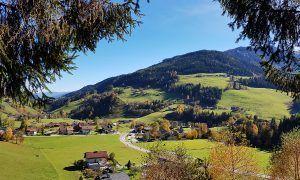 6 redenen voor een zomervakantie in de bergen