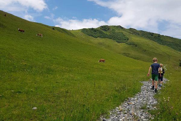 Bergafwaarts wandelen