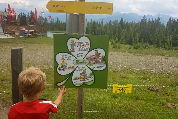 bergwandelen met jonge kinderen