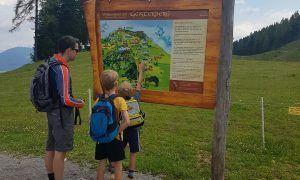 Leuke bergspeeltuin in Alpendorf (Sankt Johann)
