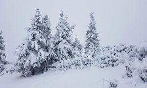 Wintervoorspelling 2019: oktober bepalend voor winterweer
