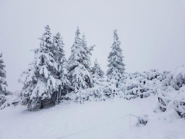weersvoorspelling wintersport