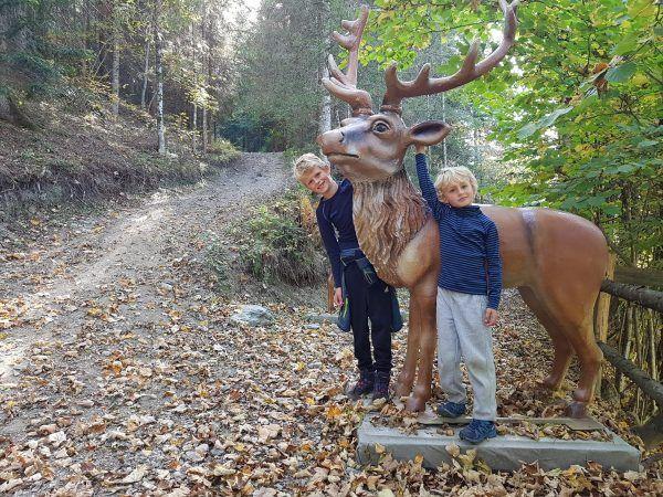 kitiwapf dierenpad in Eben wandeling met kinderen in Salzburgerland