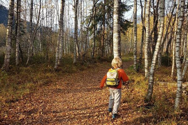 oostenrijk in de herfst, kind wandelt in herfstbos
