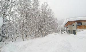 Natuur voorspelt koude winter met veel sneeuw