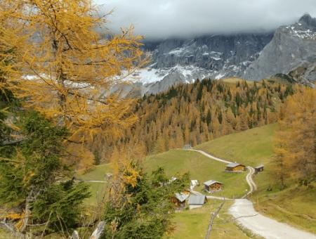 In 12 dagen verandert de herfst in de winter (6 heerlijke foto's)