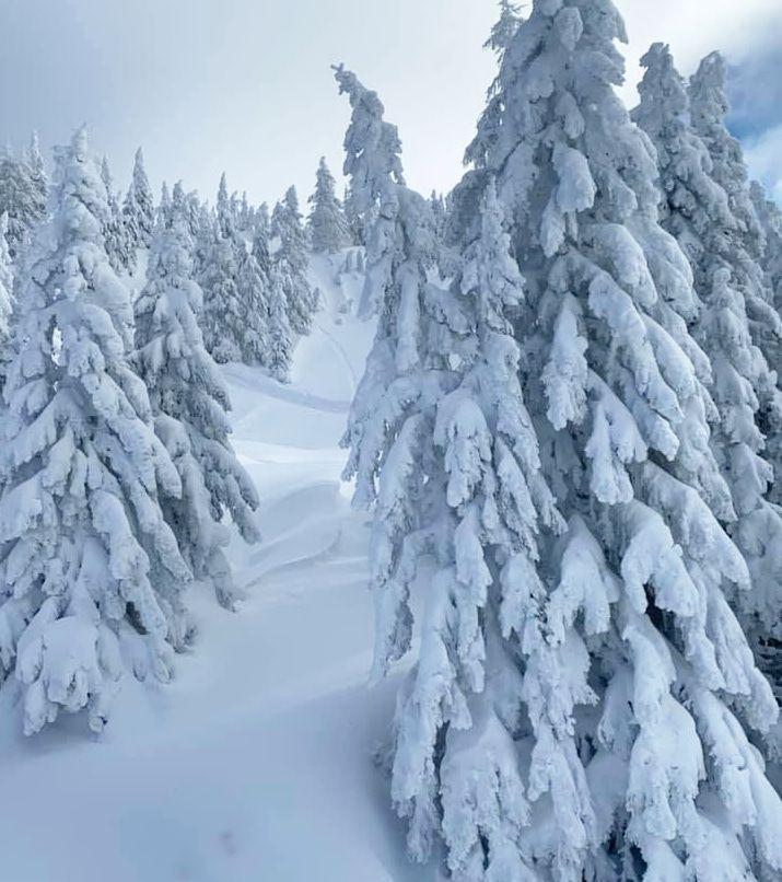 langlaufen tijdens de wintersport in oostenrijk