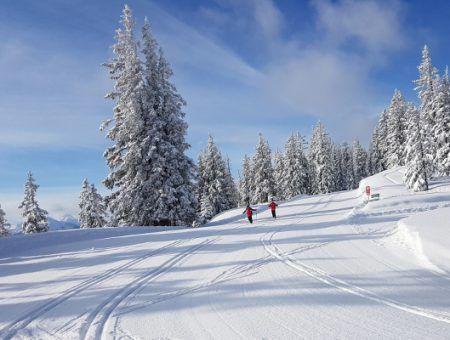 6 redenen om te langlaufen tijdens de wintersport