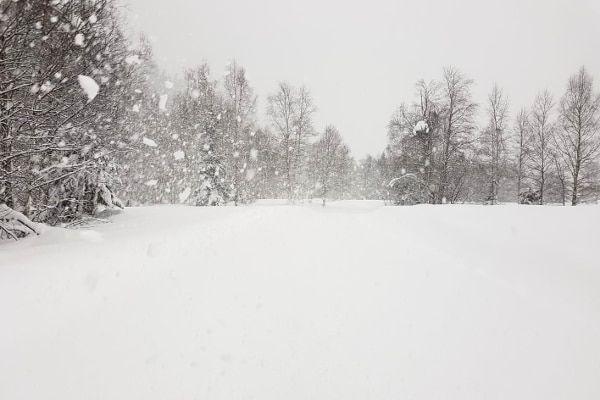langlauflen de loipe met sneeuw