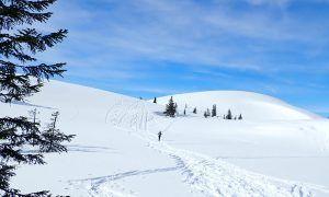 Sneeuwschoenwandelen op de Gerzkopf (omgeving Flachau)