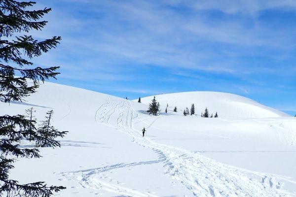 sneeuwschoenwandeling flachau