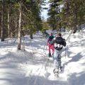 Wintersport zonder skiën, 5 leuke activiteiten naast de piste