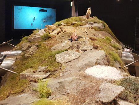 Bezoek Hohe Tauern nationaalpark museum