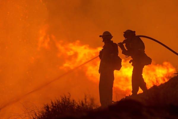 Door de warme zomer is er een verhoogde kans op bosbranden.