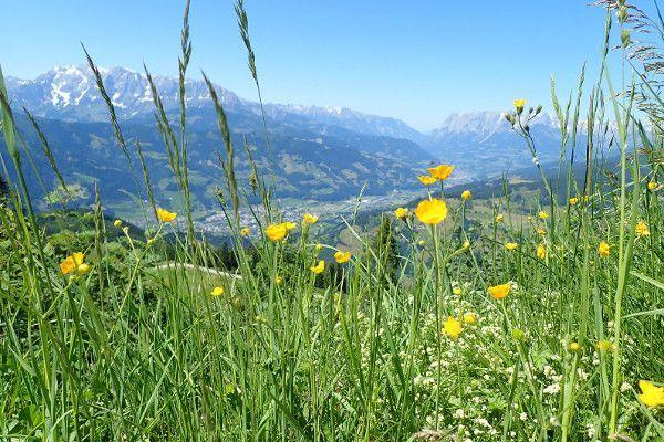 Uitzicht boven bij Alpendorf