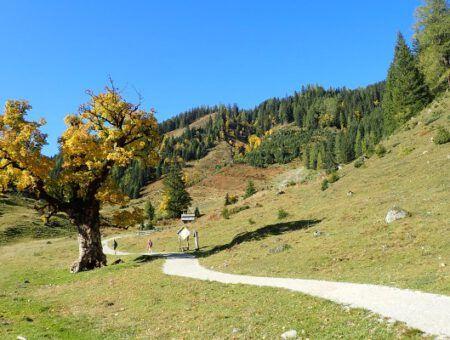 5 redenen om herfst in Oostenrijk te ervaren