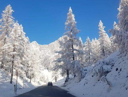 Deze 4 types moeten in december beslist naar Alpen