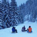 6 km rodelen in Radstadt met je Ski amadé liftkaart