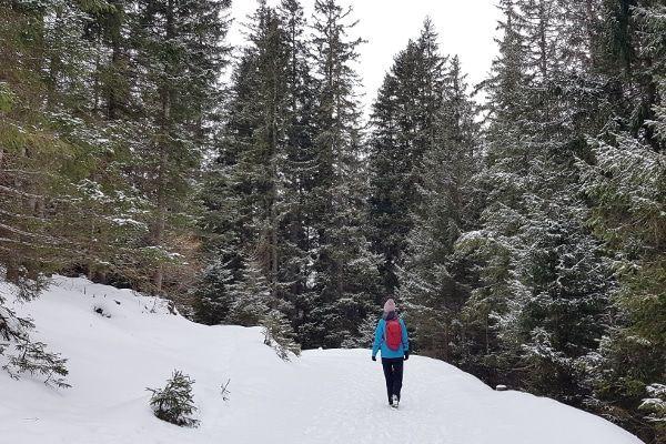 stubai winterwandeling