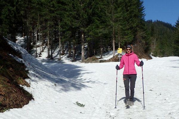 wandelstokken voor je winterwandeling