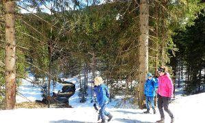 Winterwandelen: alle informatie om te starten op een rij