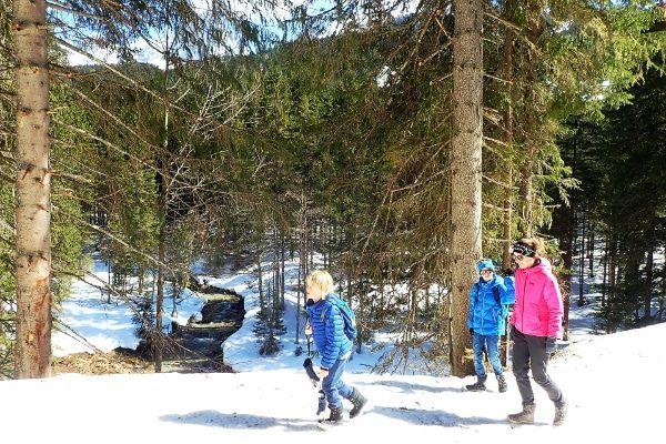 winterwandeling met het hele gezin