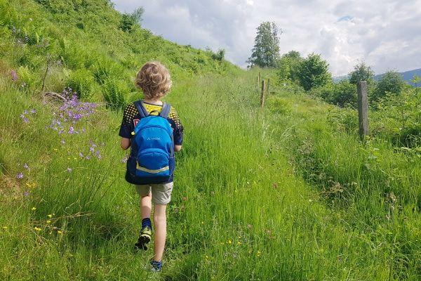 Trailrunshoenen Inov-8 voor wandelingen en hardlopen