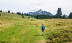 Postalm Abtenau: genieten van Oostenrijks grootste almgebied
