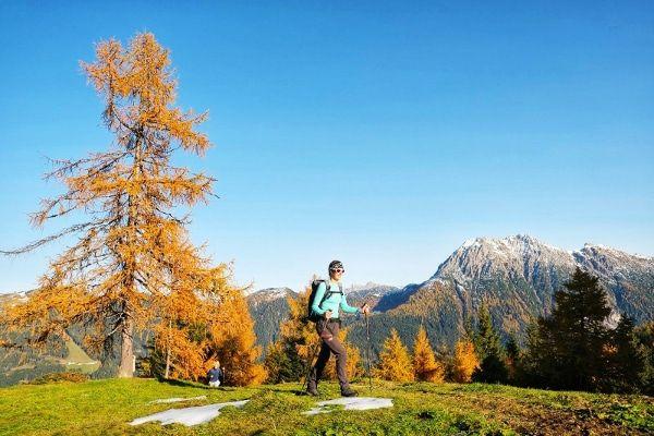 Ideaal voor wandelingen in de herfst